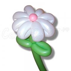 другой вид ромашек (большее количество лепестков и цветная серединка) из шаров по цене 100 руб